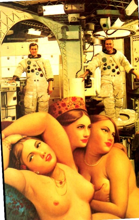 L'art et l'astronautique Skylab-graces